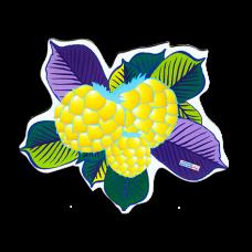 Золотой плод (м)